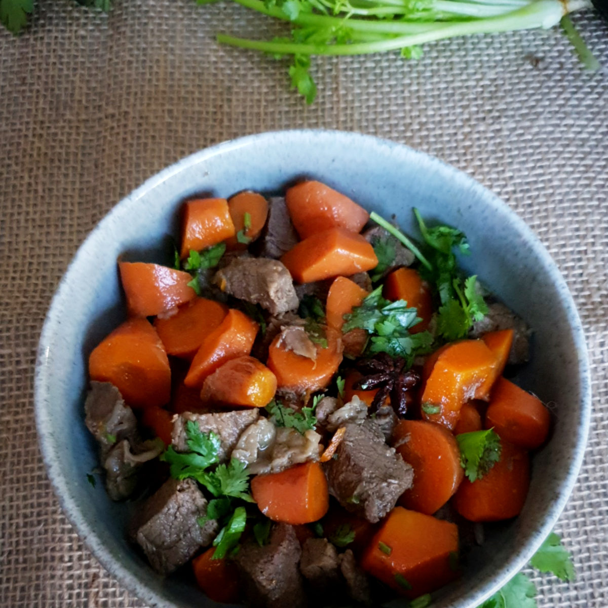 Simple beef and carrot stew