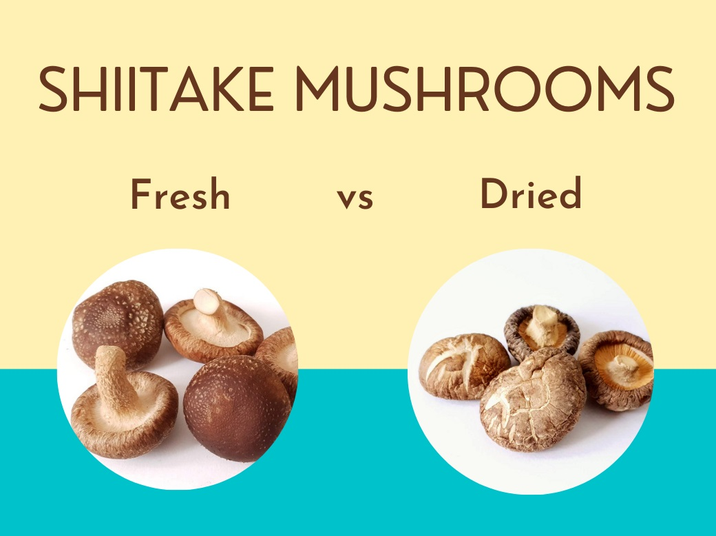 Fresh Shiitake mushrooms or Dried Shiitake mushrooms